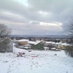Schnee_und_Fjord